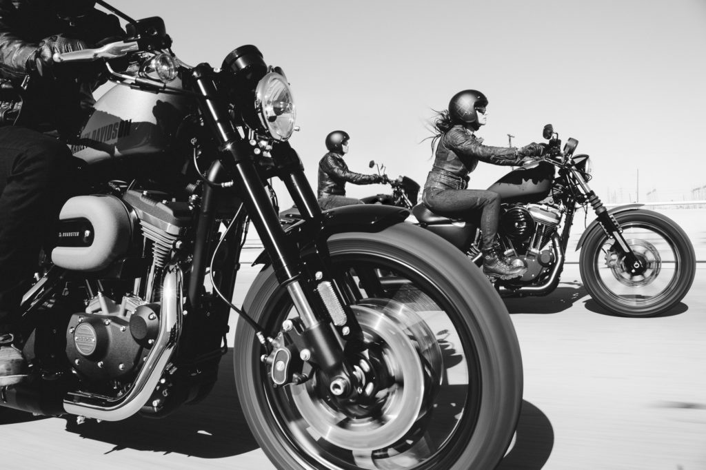 Harley Davidson, Cruizador, Sporster, Bobber