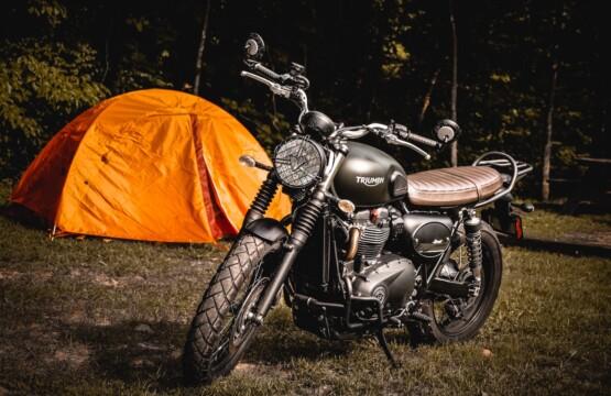 Triumph Motorcycles X Cruizador